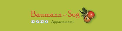 Baumann Sog Appartamenti